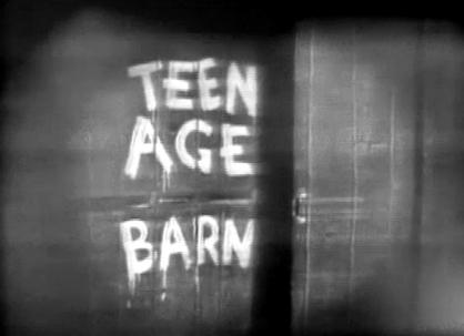 teen age barn